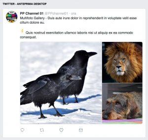 Twitter - anteprima post multifoto