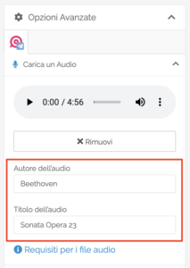 Opzioni Avanzate Audio Upload